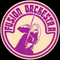 A Fusion Orchestra sticker based on a famous band picture.